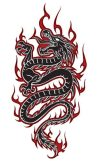 1296258919_dragones-tattoos-28